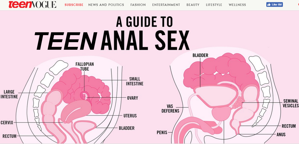Girl anal sex diagram