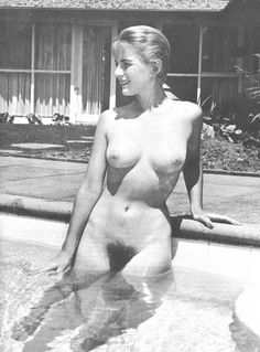 Vixen vintage erotica forums