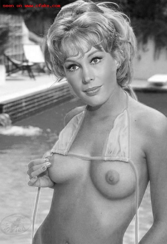 Barbara feldon nude images