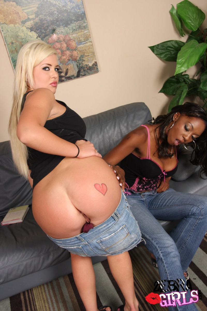 And erika vuitton andi anderson