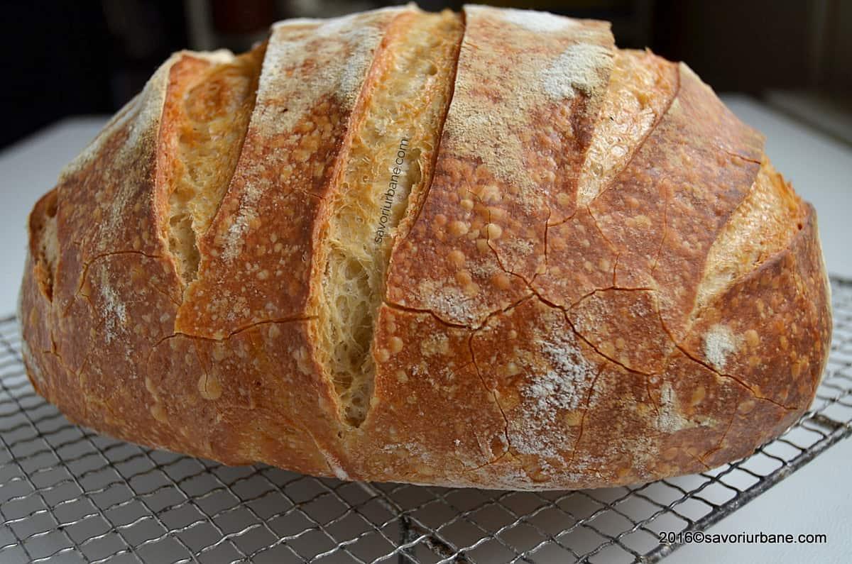 Cum se face painea