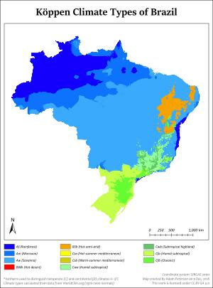 Big wet brazilian asses