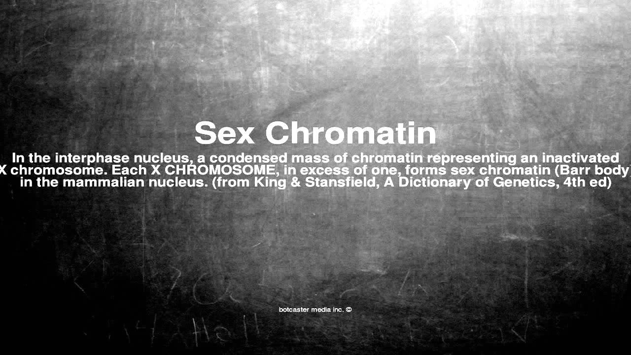 What is sex chromatin
